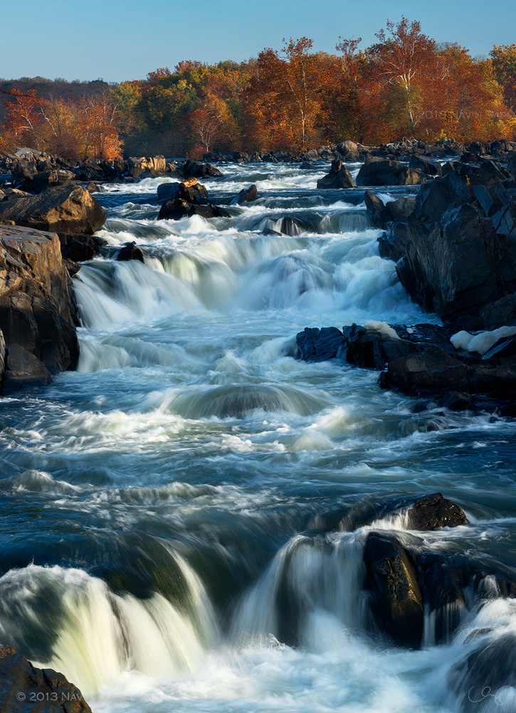 A bank of autumn colored trees sits at the top of the dramatic waterfalls of Great Falls National Park, VA.