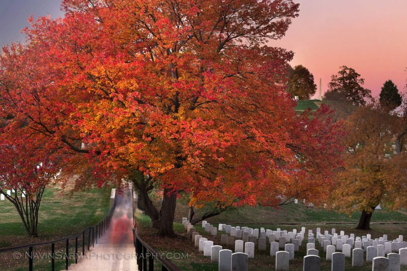 During a fall sunset, vistors walk the passageways of the Arlington Cemetery, and pause with solace.