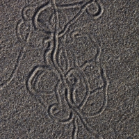 second_beach_crab_carvings