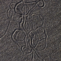 Snail Sand Pattern