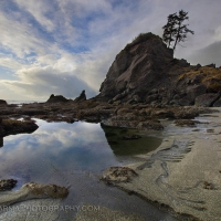 Shi Shi Beach Reflection
