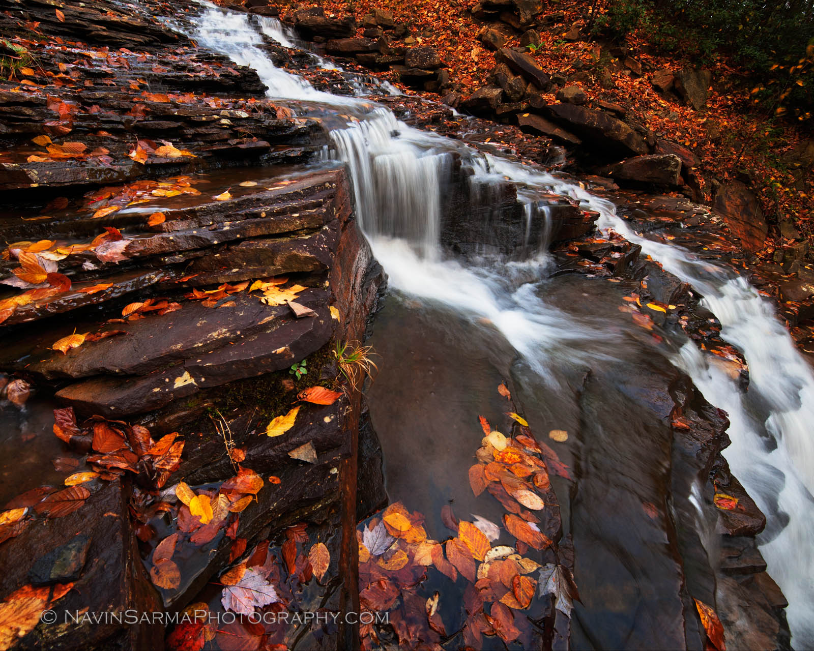 Pendleton Falls Autumn Color Blackwater Falls