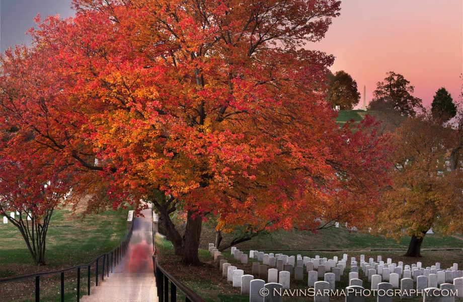 Arlington Cemetery Fall